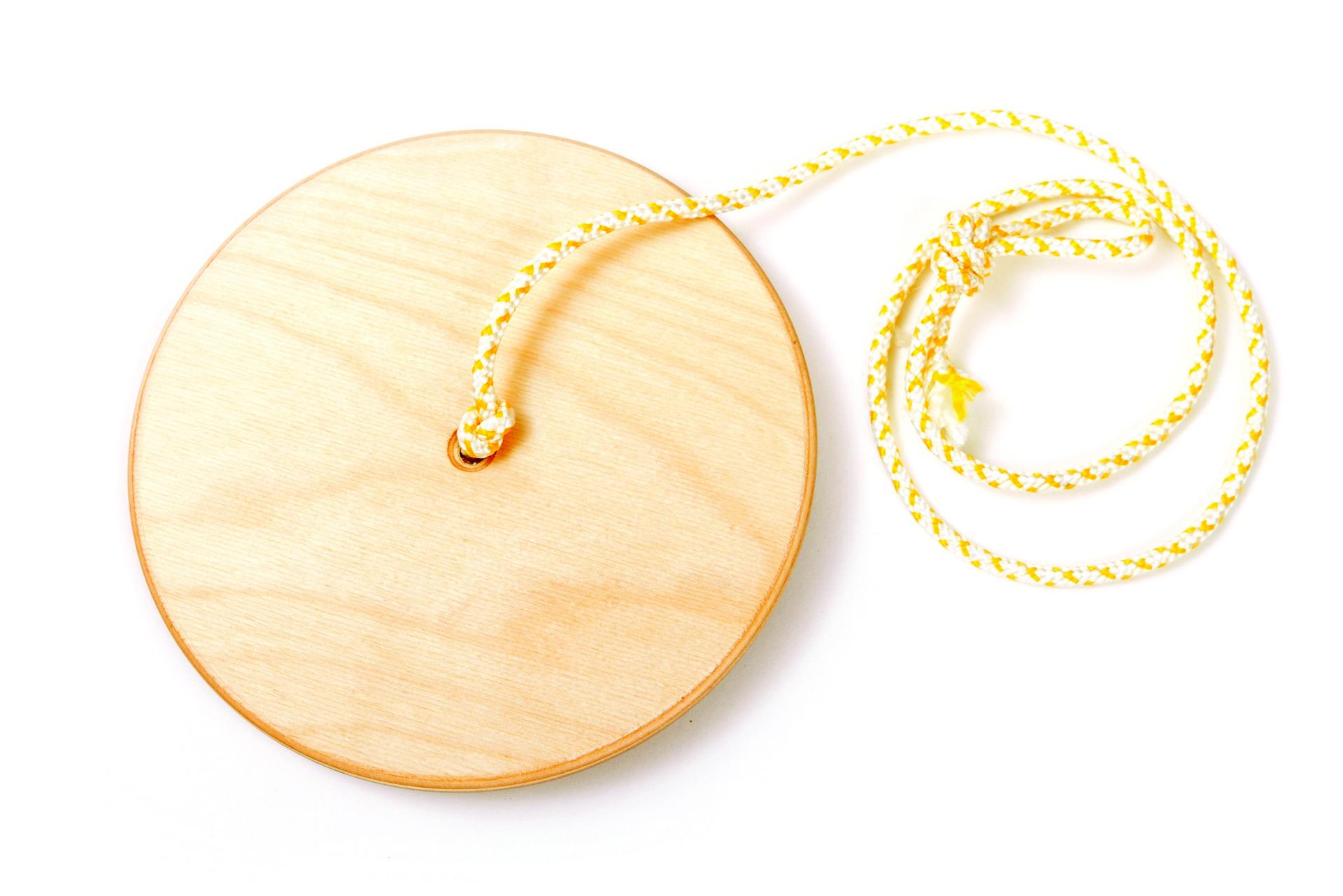 Disc swing diametr 20 cm.jpg
